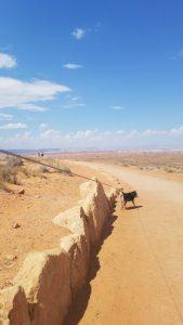 Hiking to Horseshoe Bend