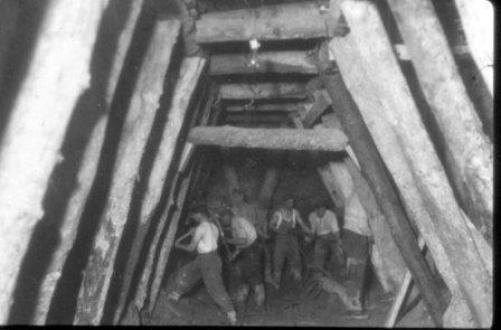 F8-tunel-vega-1
