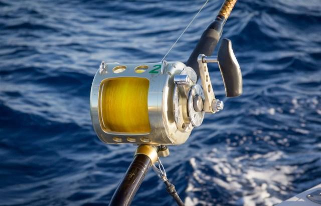 Ursulas Fishing Fleet