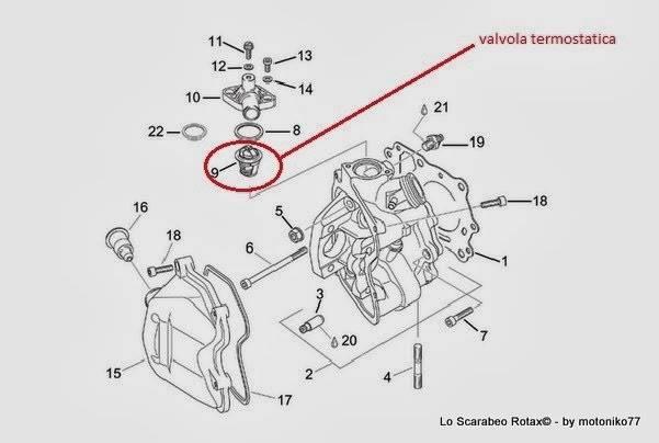 Analogie Scarabeo Leonardo Bmw C1