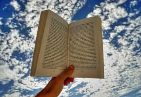 amico_libro_pedagogia