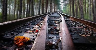 treno - del - Foliage