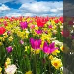 Festa di Primavera a Pralormo