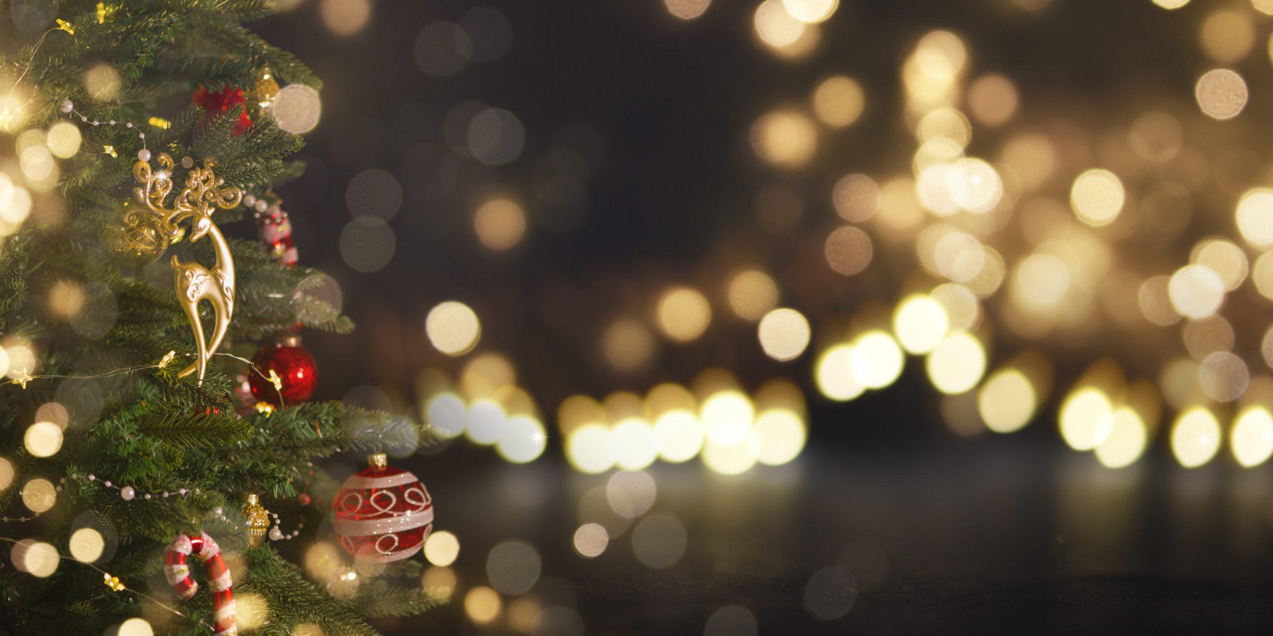 A Torino e provincia nel weekend si inizia a respirare l'atmosfera del Natale