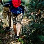 A Castelnuovo Don Bosco una passeggiata guidata tra i boschi ed i vigneti