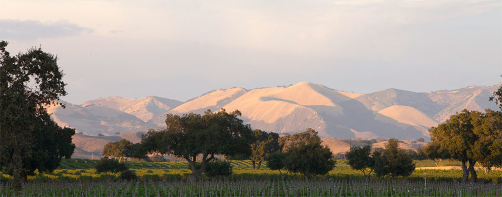 Firestone Winery on Foxen Canyon Road - Los Olivos, CA