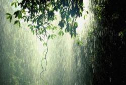 la lluvia que permite conservar la vida