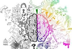 Un cerebro,dos mitades