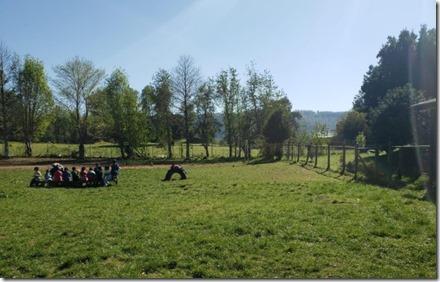 Escuela Rural Bocatoma 2