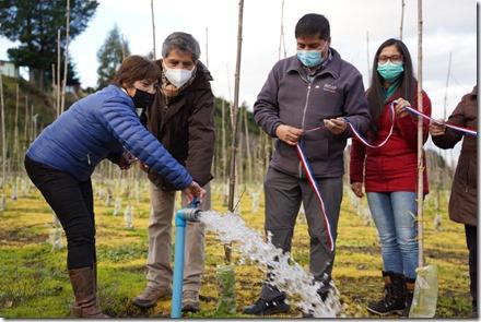 Proyecto-INDAP-Riego&Vides-Comunidad-Curaquito-LaUnión-3