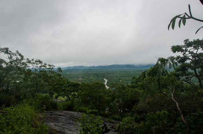 View of Sri Lanka's Forests from Sigiriya | LOST NOT FOUND | Thoughts & Feelings Sri Lanka