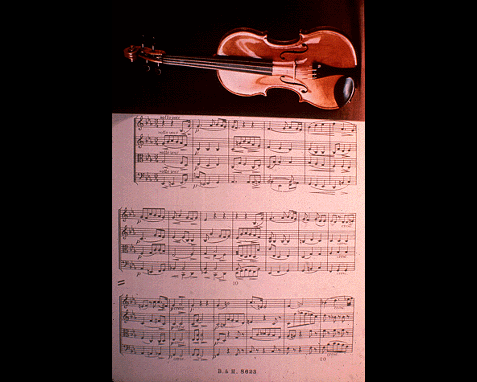 116 - Violin with music score (Cavatina), NAIC