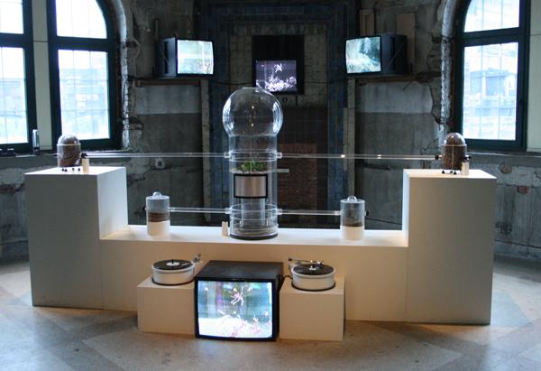 Kuai Shen - Oh!m1Gas - Audiovisuele installatie met mierenkolonie