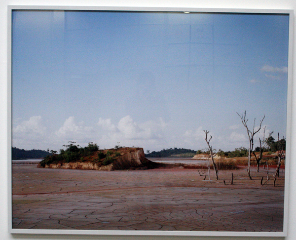 Bas Princen - Rosebel I - 128x159cm C-print