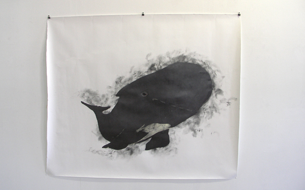 Ibo Pompe - Pilot-Whale