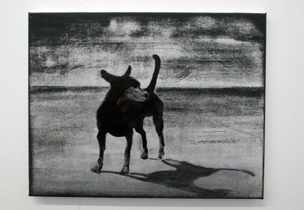 Cokkie Snoei - Peter Rederf