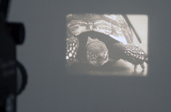 Ruben Bellinkx - The Table Turning - 16mm film loop, 2 projecties