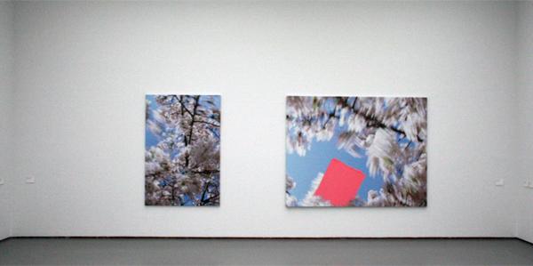 Marijke van Warmerdam - Blossom - Sweep & Blossom - Branched - Acrylverf en inkjet print op doek