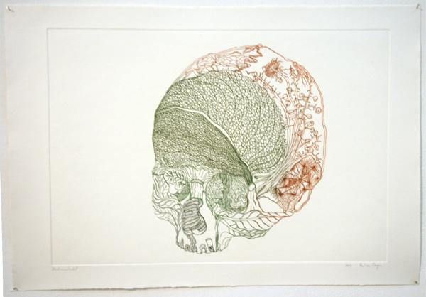 Paul van Dongen - Bladerenschedel - 28x40cm Kleurets