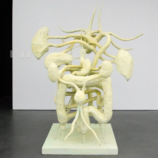 Atelier van Lieshout - Exploded View Organs - Pur schuim