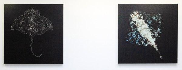 Osmo Rauhala - Ray no 9 & Ray no 5 - 90x90cm Olieverf en encaustiek op canvas