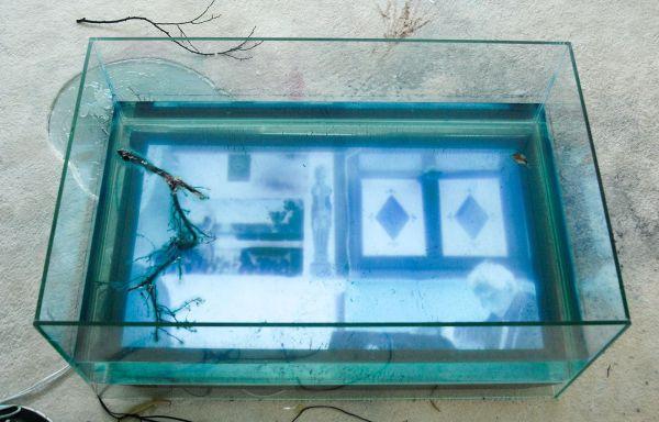 Laure Prouvost - Onbekende Titel - Installatie
