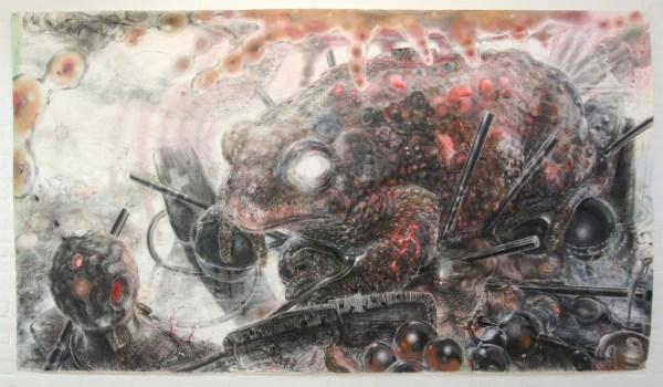 Hans de Wit - Toad - Pastel en houtskool op Saunders Waterford Papier