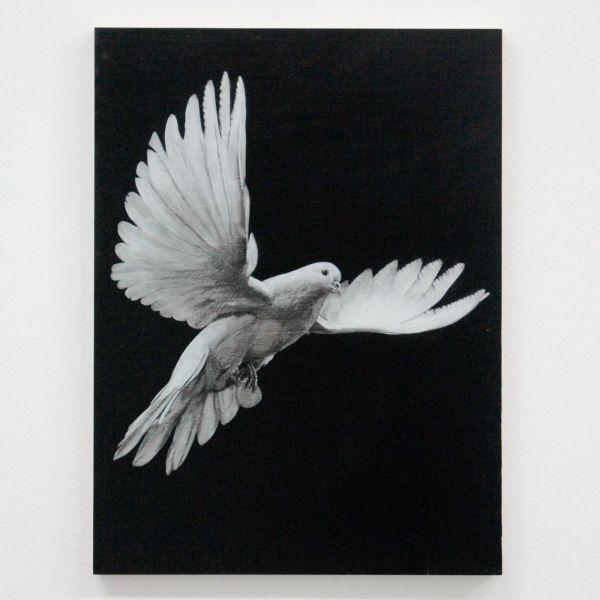 Niek Hendrix - Arrow - 28,5x38cm Oil and pencil on panel
