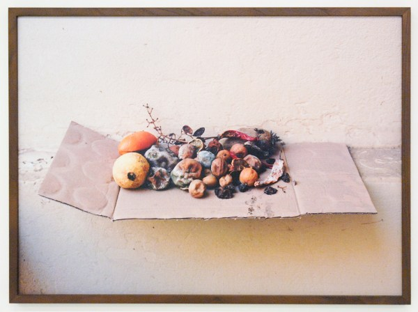 Elspeth Diederix - Fruit Still Life - Ultrachrome print
