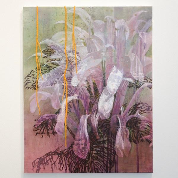 Contempo Galerie - Nikkie le Nobel