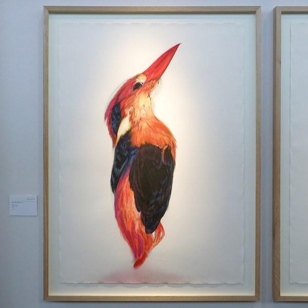 Janknegt Gallery - Roos Holleman