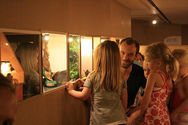 24 Diorama's Waar is Nijntje (in actie)
