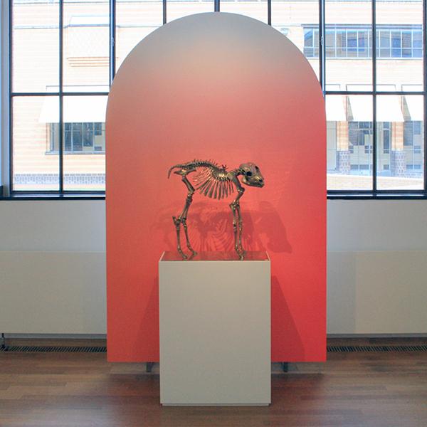 Alex Israel - Flat Untitled - Hout, gips en verf & Sherrie Levine - False God - Gegoten brons