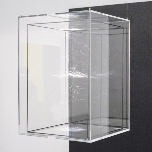 Andersen's Contemporary - Tomas Saraceno
