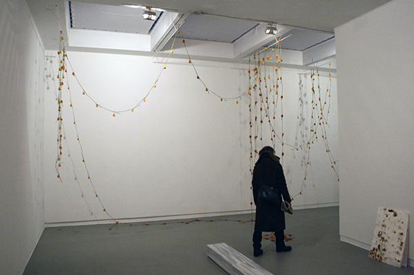 Anya Gallaccio - Head over Heels (Barcelona) - Installatie met 365 Gerbra's