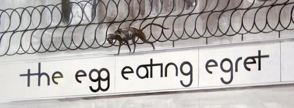 Charles Avery - Untitled (Egg Eating Egret Bar) - Potlood en inkt op papier (detail)