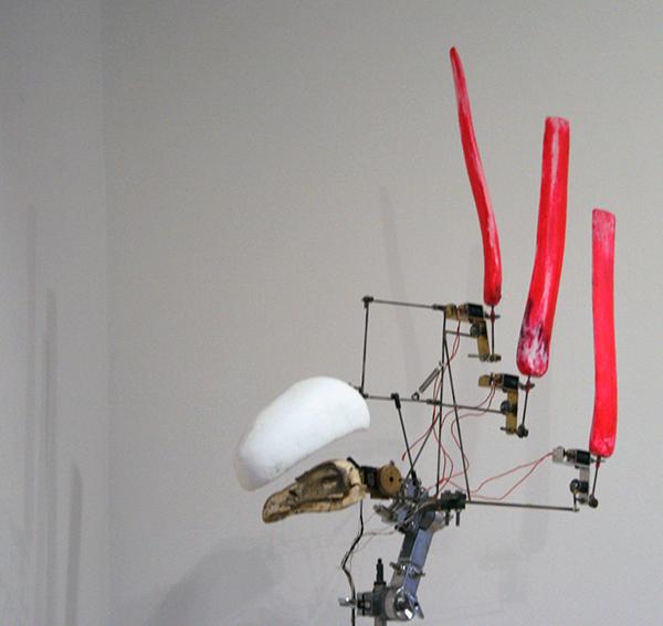 Christiaan Zwanikken - Pink Tailed Vulture - 60x100x14cm Gierschedel, staal, hout, solenoids, kenetica en computer