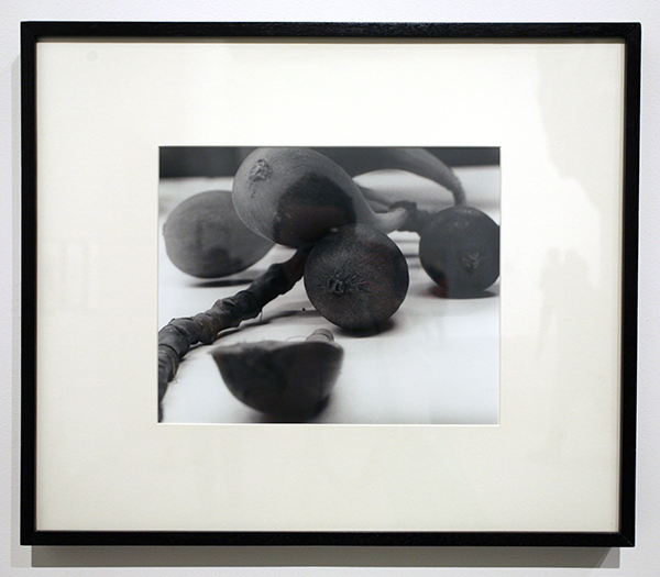Christopher Williams, Angola to Vietnam, 1989, gelatin silver print