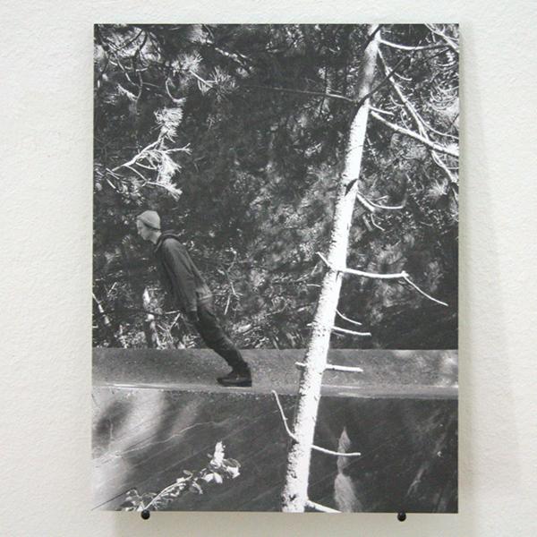 Danny Foolen - Woods - Foto op alu-dibond