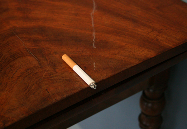 Daragh Reeves - A Still Life of a Cigarette and Smoke - Sigaret, nylon draad, veren, lint, wol, vezels en lijm 2013