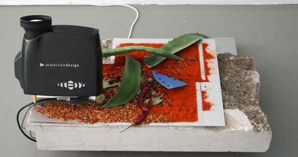 David Jablonowski - Screenshot - 50x82x66cm Beamer, grafiet, offset plaat, aluminium, kruiden en bladeren