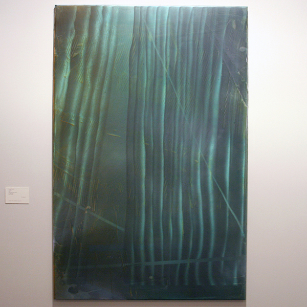 Hidde van Seggelen Gallery - Damian Taylor