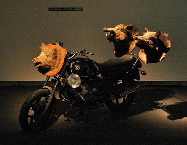 Hilarius Hofstede - Into The Wild, Cherchez la Truffe - BMWmotor met drie wildezwijnenkoppen