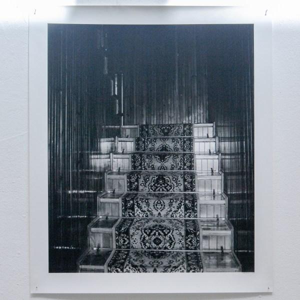 Joanna Piotrowska - Untitled
