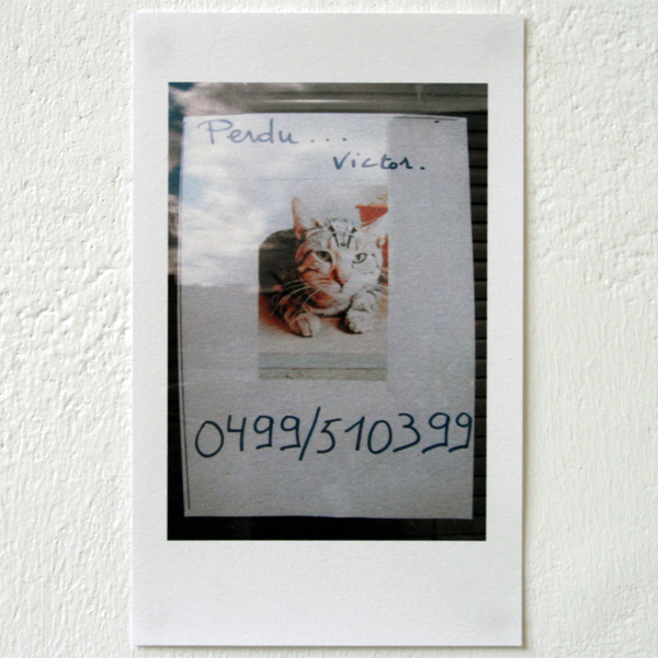 Markus Stefan & Annelinde Kirckgaesser - Looking for a found answer to a found question - Looking for Victor - Installatie van foto's en gesproken tekst