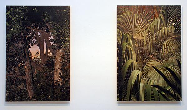 Persijn Broersen & Magrit Lukacs - Forrest (Les Zones Terrestres) small & Tropics (Les Zones Terrestres) small - 80x120cm, Print op multiplex