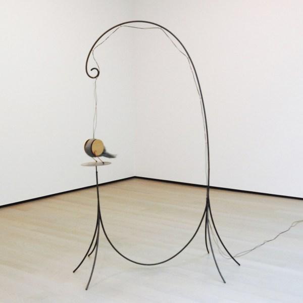 Peter Zegveld - Stokvogel