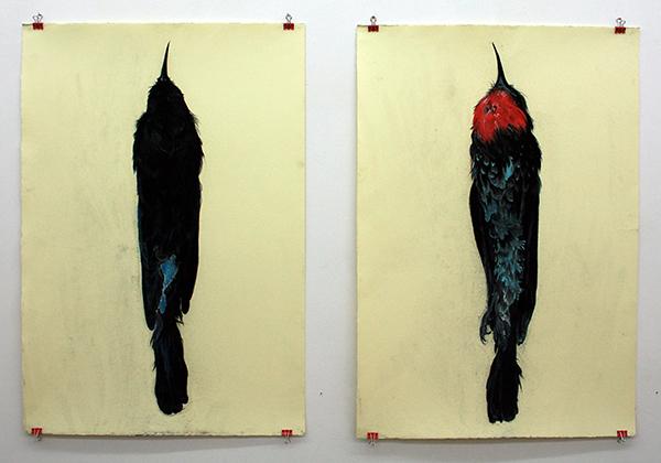 Roos Holleman - Karmijnrode Bijeneter II & I - ieder 78x54cm Pastelkrijt en grafiet op papier