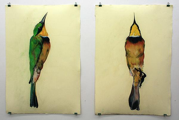Roos Holleman - Kleine Bijeneter I & II - ieder 78x54cm Pastelkrijt en grafiet op papier
