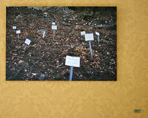 Rumiko Hagiwara - Name Garden